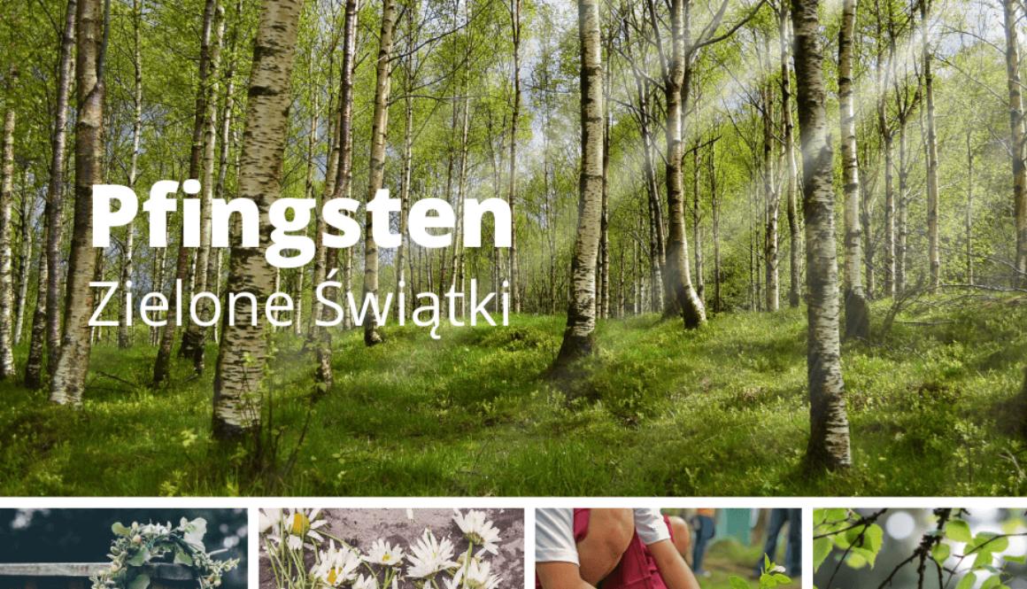 pfingsten-zielone-swiatki-kolaz